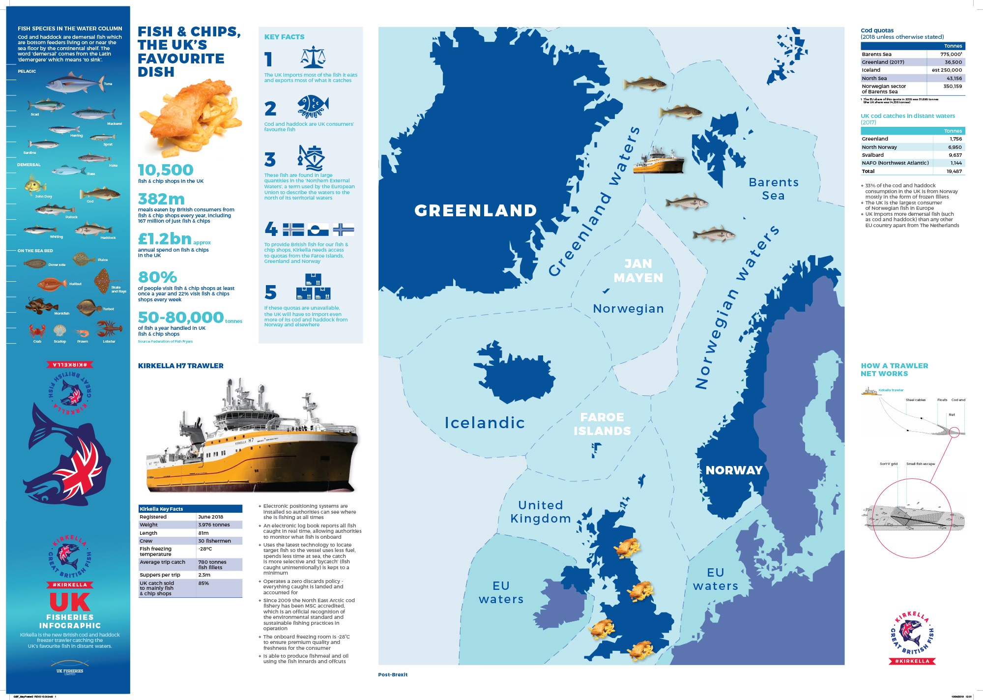 Great British Fish infographic